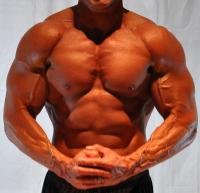 anabolic reactions may be characterized as